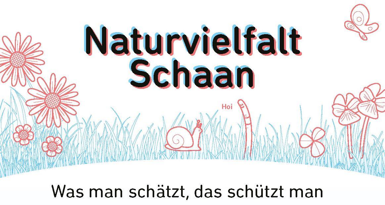 Naturvielfalt 2021.jpg